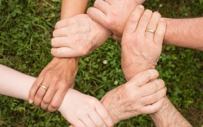 3. Confiança Quebrada – Como Voltar a Confiar?